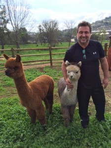 Richard Elliot at home with his pet alpacas in Southern California